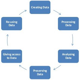 The Data Lifecycle