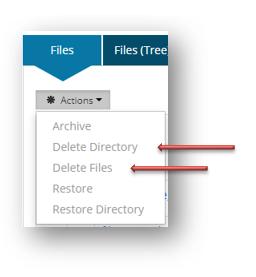 Using SISCIN delete action